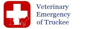 Emergency Vet – serving Donner, Truckee and Tahoe areas